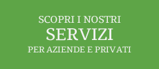 Scopri i nostri servizi